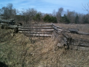 split-rail fence along Queensborough Road, Hastings County