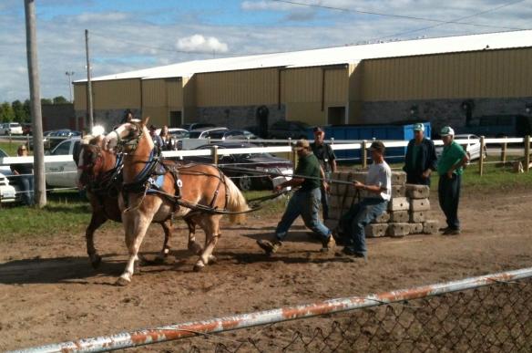 Madoc Fair horse pull
