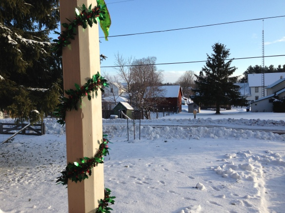 Christmas morning at the Manse, looking out from the front porch: the snow was sparkling white in the brief bit of glorious sunshine that broke up an otherwise cloudy few days.