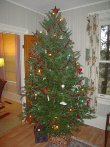 Our Christmas Tree, all decorated up with ornaments we've collected from our travels over the years.