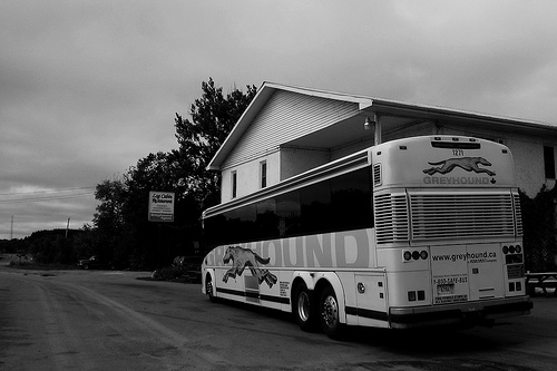 Contrary to what one might expect, there is in our experience almost always a bus stopped at the modest Log Cabin restaurant outside Actinolite. We pass it on the final stage out our journey to Queensborough from Montreal. (Photo by Vlastula via Flickr)