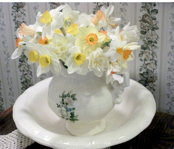 Daffodils picked for a frield at The Ridge, near Coe Hill. Don't they look beautiful in that vintage pitcher? (Photo courtesy of Ernie Pattison)