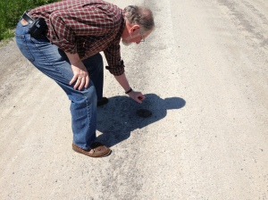 Raymond gets readily (admittedly rather gingerly) to pick up Mr. Hunt Club Road Turtle and move it to safety on the side of the road – the side it was heading for, of course! Wouldn't want to mess up its travel plans.