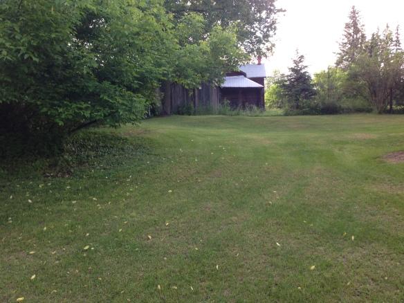 croquet lawn 1