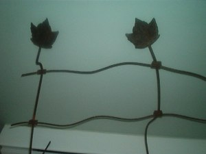 vintage fence with maple leaves