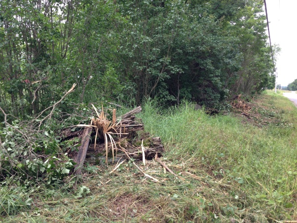 split-rail fence damaged by bush-clearing machine