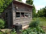 Rustic garden shed, Tweed Garden Tour