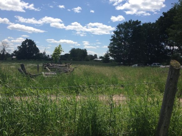 split-rail fence in Hastings County