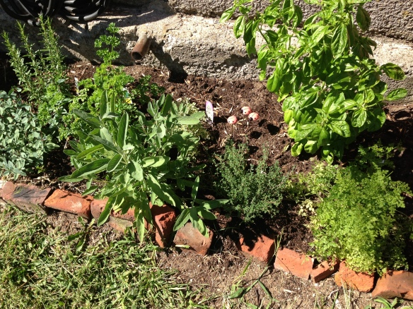 herb garden at the Manse