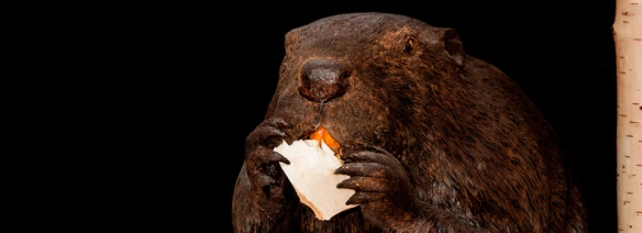 beaver carving by Jen Couperus