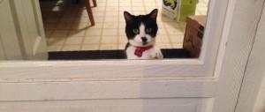 Sieste at the doorway