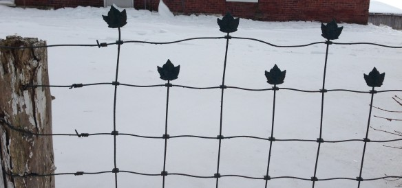 Maple-leaf fence