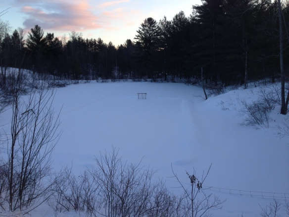 the outdoor rink