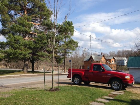 Green grass, red truck