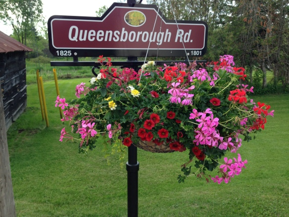 Queensborough Road planter