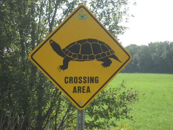 Turtle-crossing sign