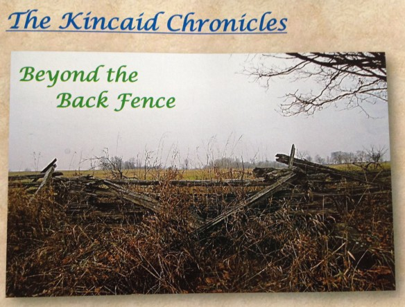 Beyond the Back Fence