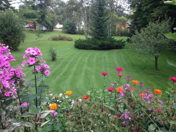 The MacNeils' garden