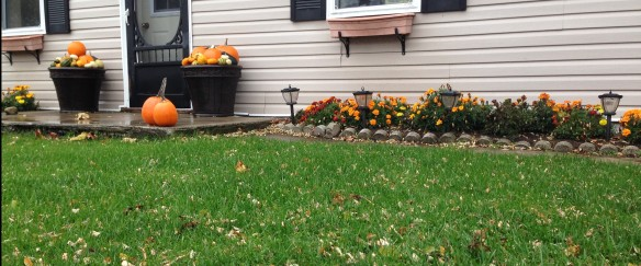 Pretty fall display