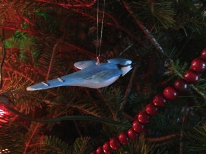 Blue jay on the tree