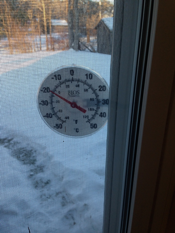 Thermometer at the back of the Manse
