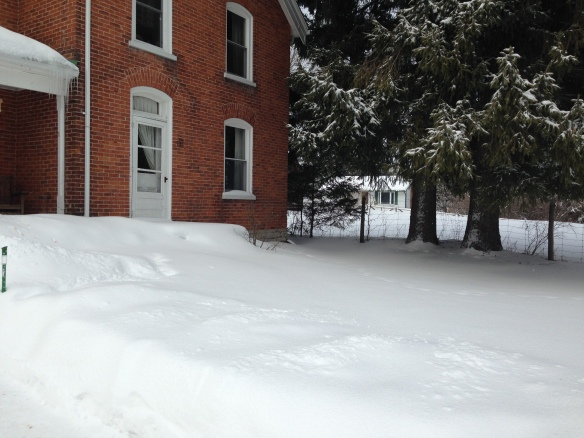 Front steps unshovelled