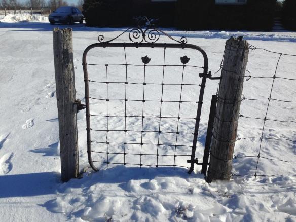 Maple leaf fence 1