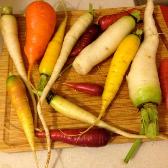 Colourful carrots