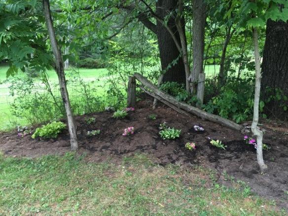 Shade garden after 2