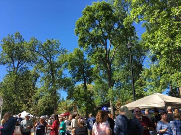 Great trees and blue sky at Feast from Farm