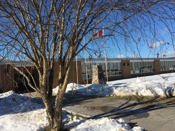 The flag at Madoc Township Public School
