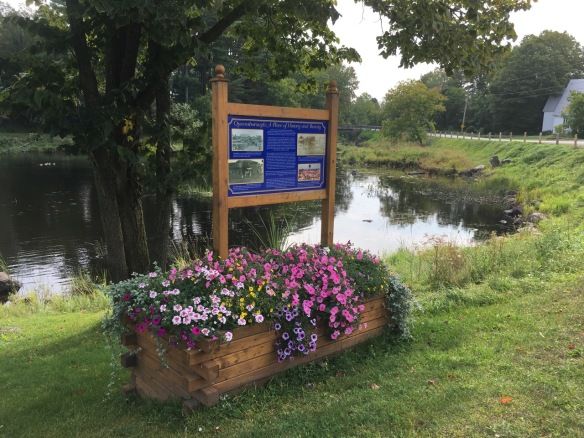 Flower box at the river