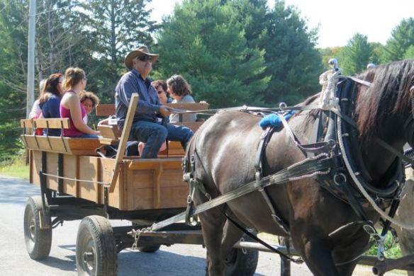 Wagon ride by Terry Mandzy