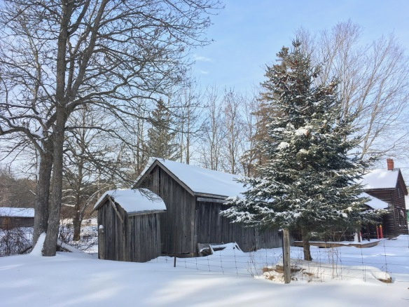 Kincaid House from the back yard, Christmas 2017